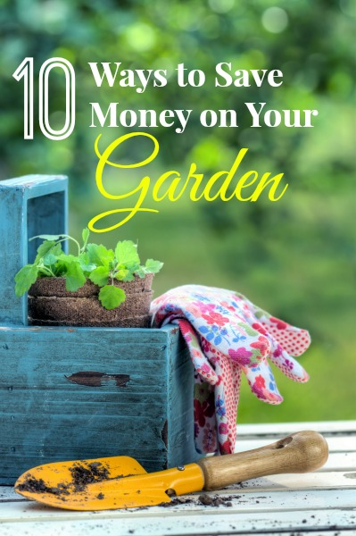 10 Ways to Save Money on Your Garden
