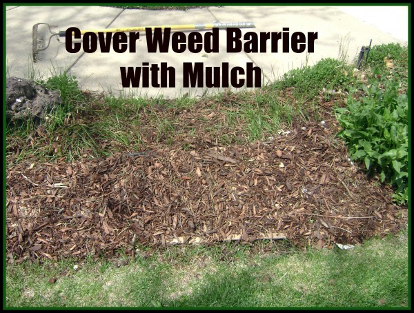 Mulched Weed Barrier
