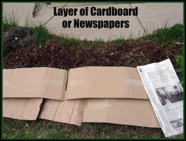 Newspaper Barrier