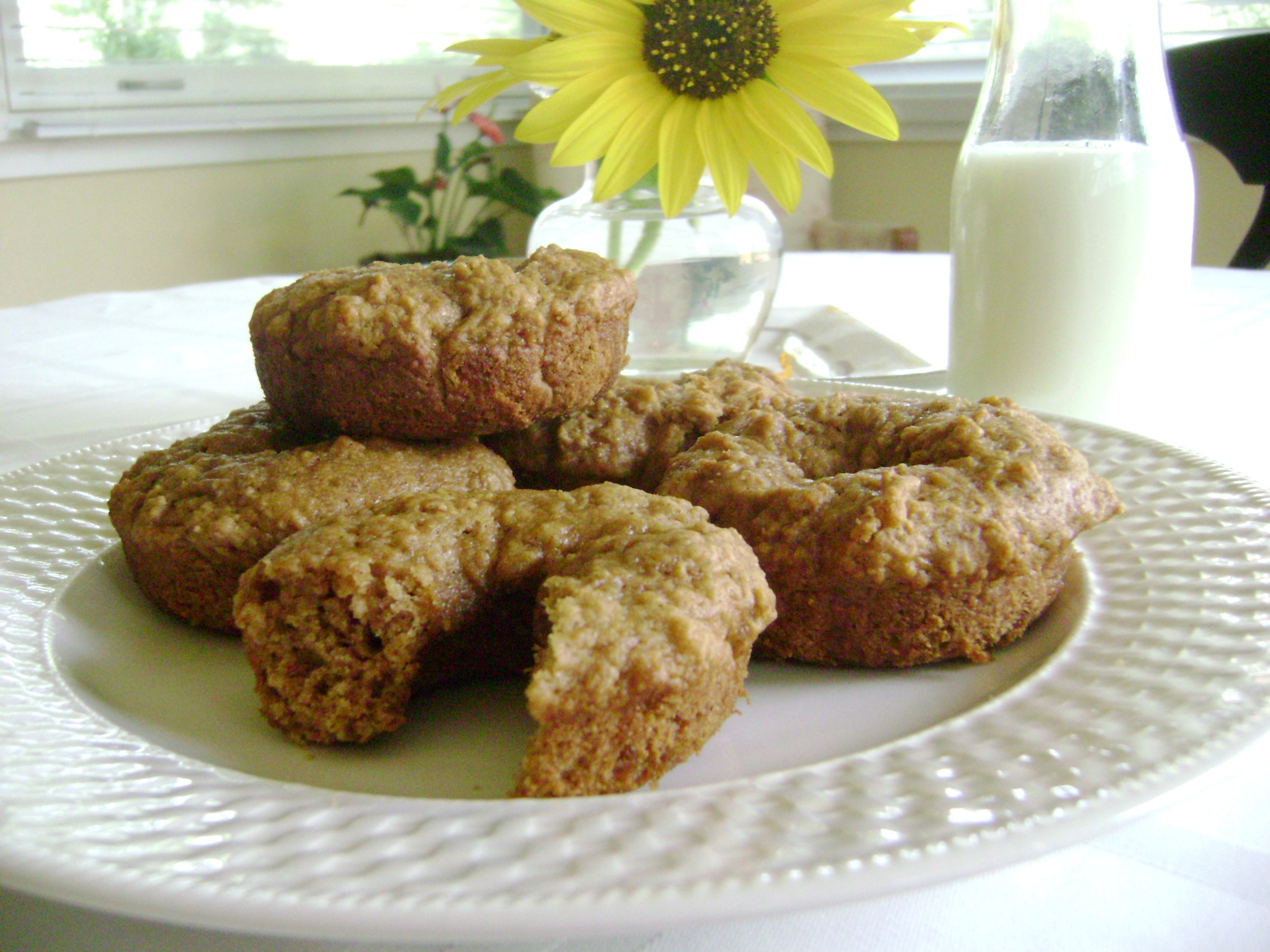 Baked Apple Cider Donuts - The Greenbacks Gal