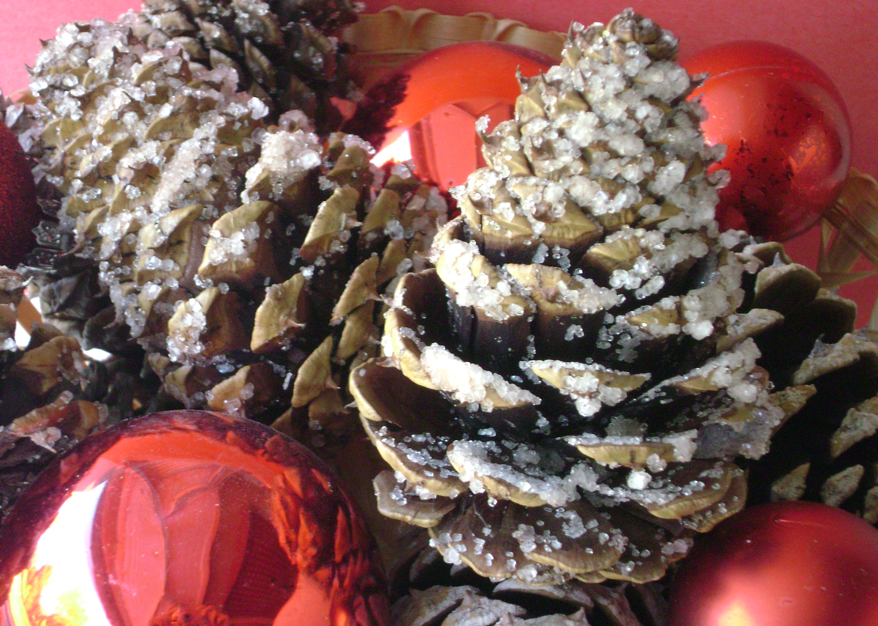Pine Cone Fire Starter with instructions for colored flames