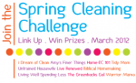 Spring Cleaning Challenge Winners