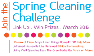 Spring Cleaning Challenge