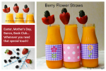 Make Easy Berry Flower Straws with Cut Fruit