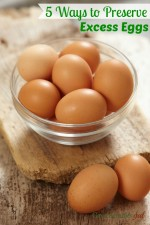 5 Ways to Preserve Your Excess Eggs
