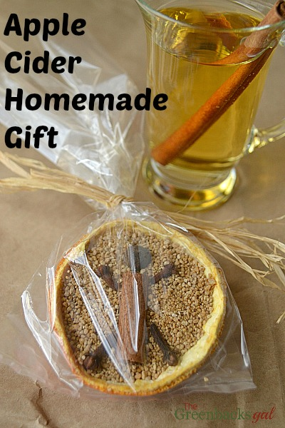 Hot Apple Cider Mix Homemade Gift