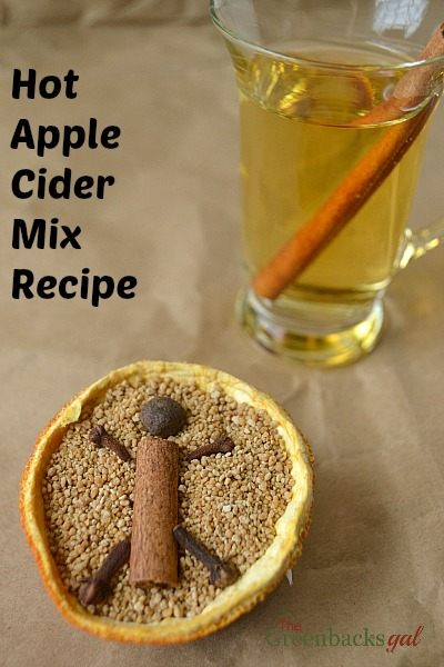 Hot Apple Cider Mix Recipe