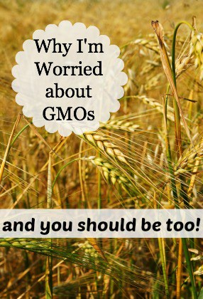 Why I'm Worried About GMOs {and You Should Be Too!}