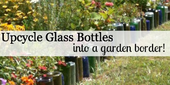 Upcycle Glass Bottle Border