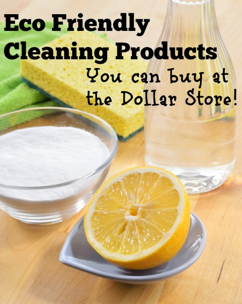 Eco Friendly Cleaning Products You Can Buy at the Dollar Store