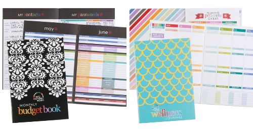 Erin Condren Budget Book Wellness Journal