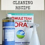 Non-Toxic Oven Cleaning Recipe features borax, vinegar, baking soda, and Castile soap
