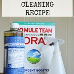 Non-Toxic Oven Cleaning Recipe cleans without toxic fumes and a minimum of elbow grease