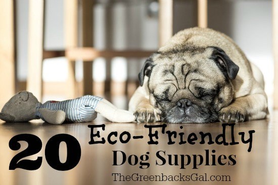 20 Eco-Friendly Dog Supplies when you want the best for your dog