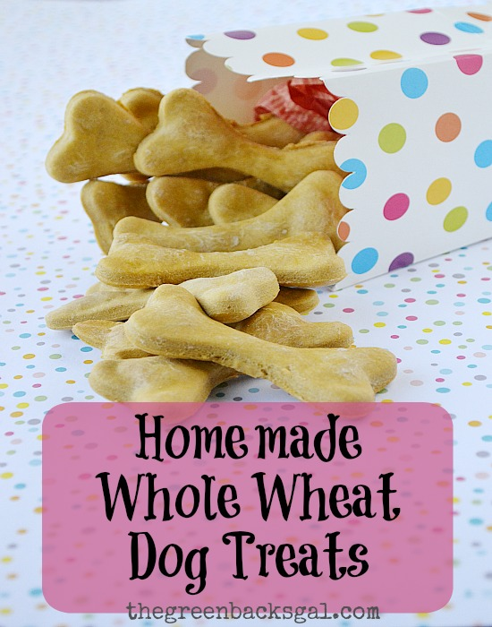 An easy DIY: Homemade Whole Wheat Dog Treats Recipe. Only three ingredients.
