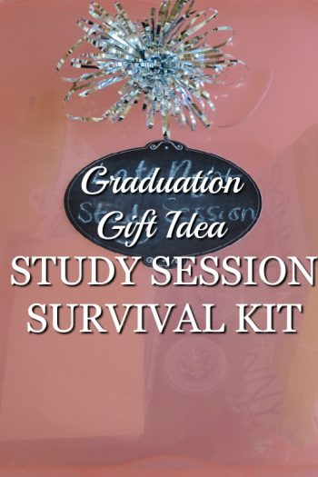 Graduation Gift Idea: Study Session Survival Kit