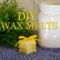 DIY Beeswax and Coconut Oil Wax Melts