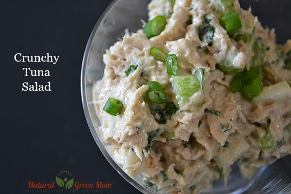 Tuna salad with canned tuna, celery, jicama, and green onions