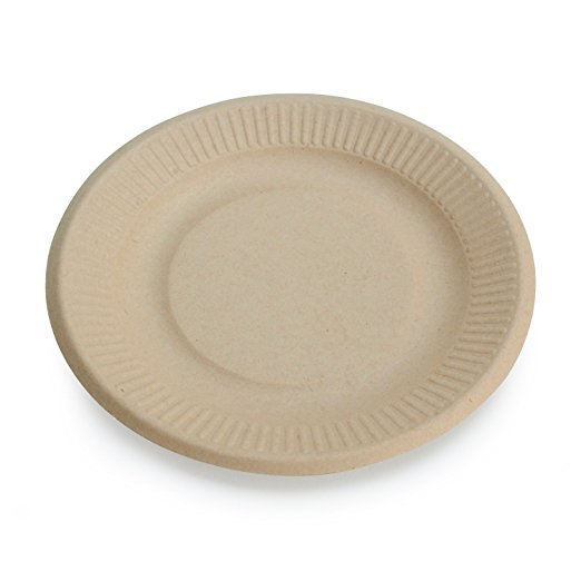 eco friendly paper plates  sc 1 st  Natural Green Mom & Earthu0027s Naturals Eco Friendly Paper Plates - Natural Green Mom