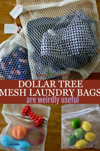 Dollar Tree Mesh Laundry Bags Are Weirdly Useful