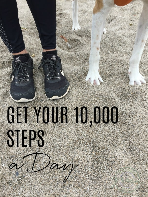 Feet wearing black tennis shoes next to white dog paws standing in sand with title Get Your 10,000 Steps a Day
