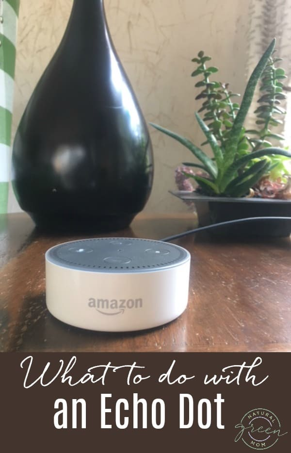 What to do with an Amazon Alexa Echo Dot. Practical applications.