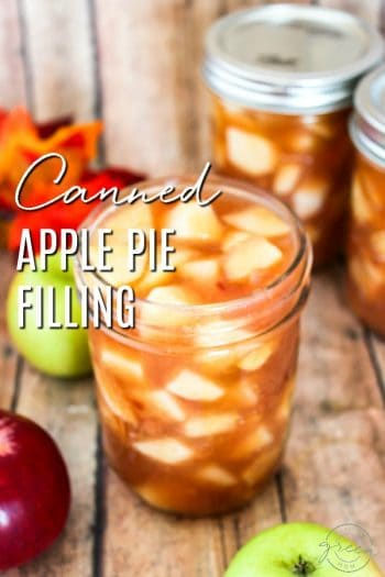 Honestly, Canning Apple Pie Filling is Easy